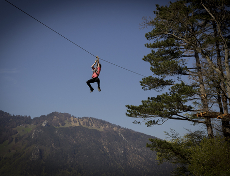 Flying_Fox_Swiss_Holiday_Park_17.jpg